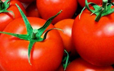 JR東日本がトマト販売!? 理由は?影響は?〜トマトに隠された1つの狙い〜