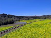 三重県亀山市、鉄道遺産を活用して地域活性