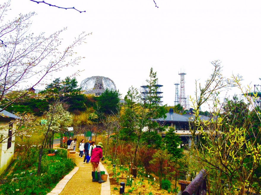 外国の庭園を思わせる六甲ガーデンテラスから望む「自然体感展望台 六甲枝垂れ」の景色