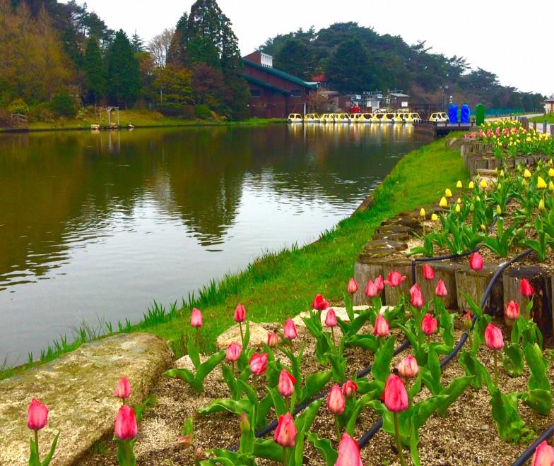 広大な自然が魅力的な六甲山カンツリーハウス